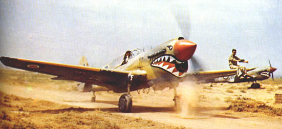 P-40's of 112th Sqn.